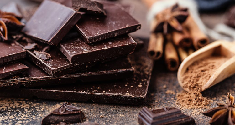 A beginner's guide to dark chocolate